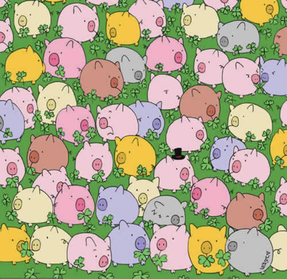 Combien y a t-il de cochons roses sur le dessin ci-après ?